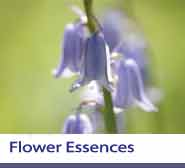 Flower Essences Section