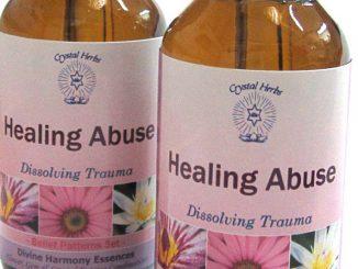 Healing Abuse Essence