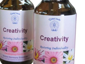 Creativity Essence