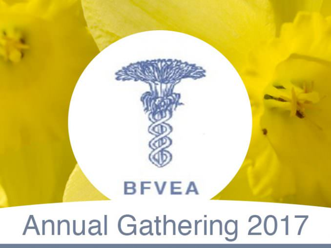 BFVEA Gathering