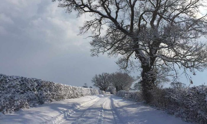 Snowy Norfolk Roads