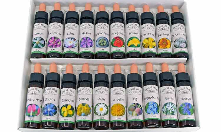 Flower Essence Collection Set - 10ml